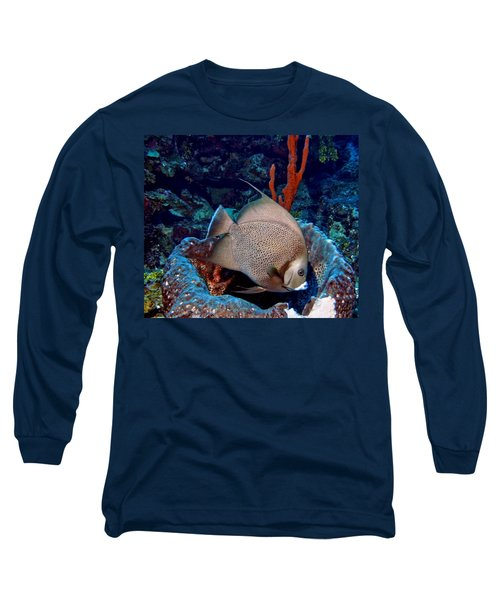 Gray Angel Fish And Sponge Long Sleeve T-Shirt by Amy McDaniel