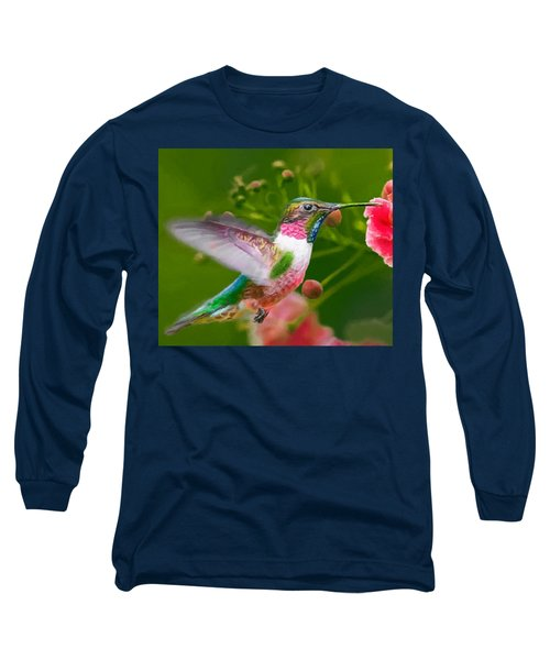 Hummingbird And Flower Painting Long Sleeve T-Shirt