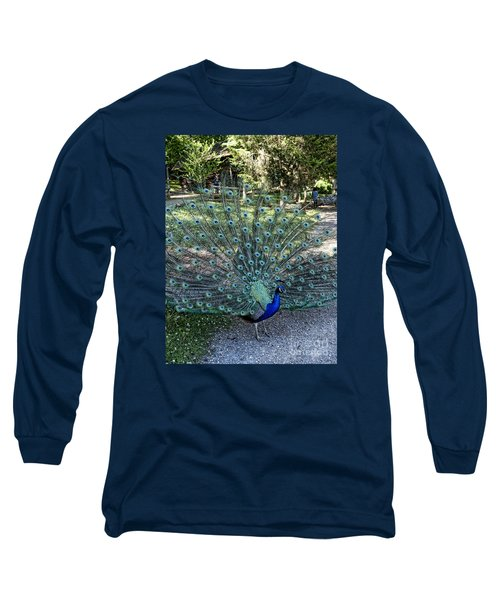 In All His Glory Long Sleeve T-Shirt