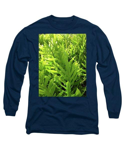 Lauae Fern Long Sleeve T-Shirt