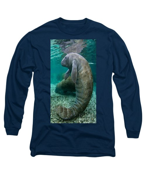 Manatee In Crystal River Florida Long Sleeve T-Shirt by Merton Allen