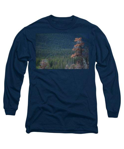 Montana Tree Line Long Sleeve T-Shirt