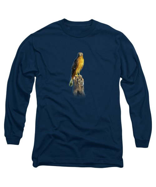 Northern Harrier Hawk Long Sleeve T-Shirt by Mark Andrew Thomas