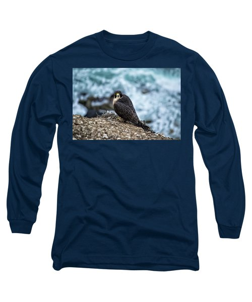 Peregrine Falcon - Here's Looking At You Long Sleeve T-Shirt