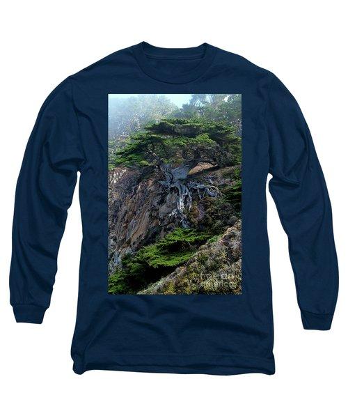 Point Lobos Veteran Cypress Tree Long Sleeve T-Shirt