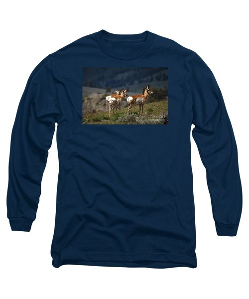 Pronghorns Long Sleeve T-Shirt by Robert Bales