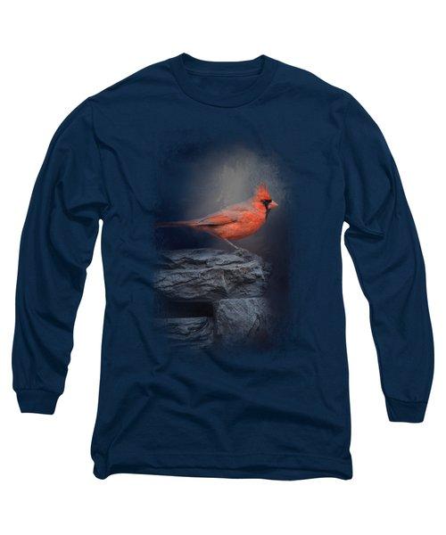 Redbird On The Rocks Long Sleeve T-Shirt by Jai Johnson