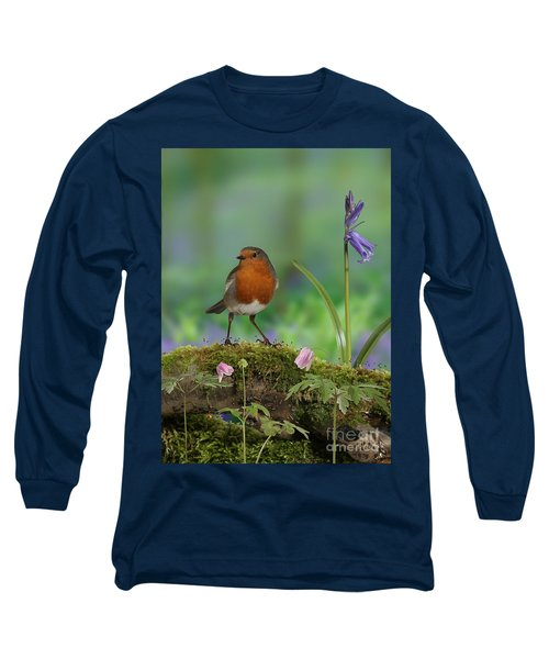 Robin In Spring Wood Long Sleeve T-Shirt