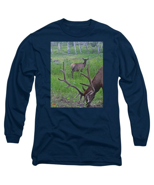Rocky Mountain Bull Elk And Cow Long Sleeve T-Shirt