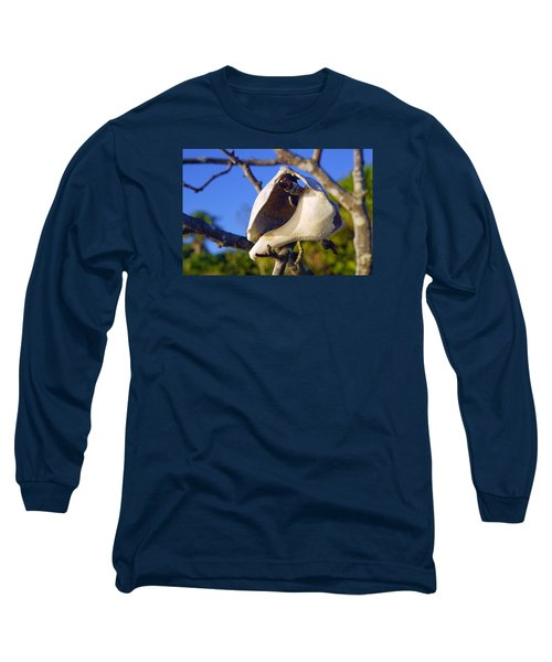 Shell On Brach Of Mangrove Tree At Barefoot Beach In Napes, Fl Long Sleeve T-Shirt