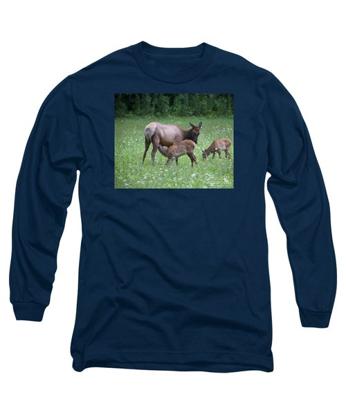 Smoky Mountain National Park Elk Cow Nursing Calf Long Sleeve T-Shirt by Nature Scapes Fine Art