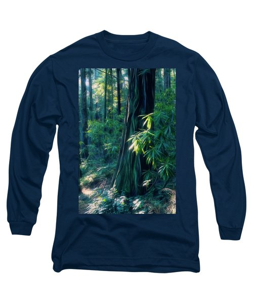 Sunshine In The Forest Long Sleeve T-Shirt