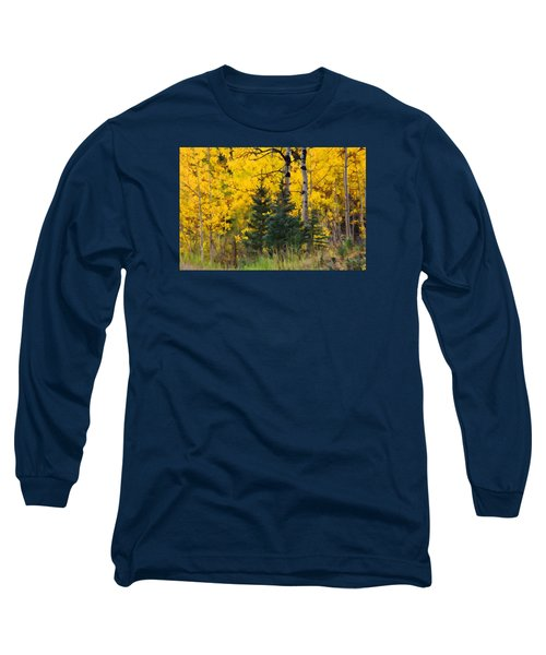 Surrounded By Gold Long Sleeve T-Shirt by Diane Alexander
