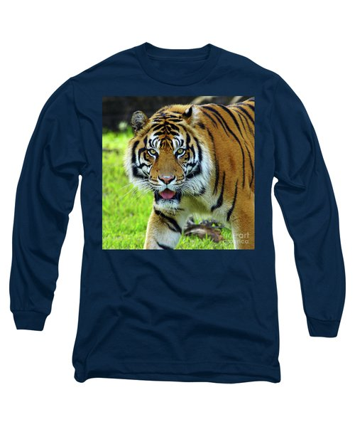 Tiger The Stare Long Sleeve T-Shirt by Larry Nieland