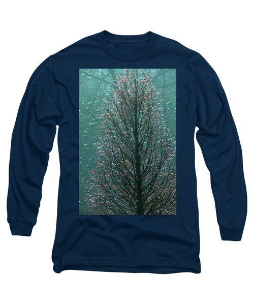 Tree In Autumn, With Red Leaves, Blue Background, Sunny Day Long Sleeve T-Shirt by Emanuel Tanjala
