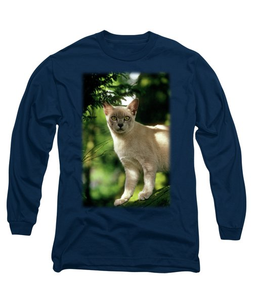 Wilham Long Sleeve T-Shirt by Jon Delorme