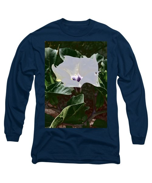 Long Sleeve T-Shirt featuring the photograph Flower And Fly by Judy Kennedy