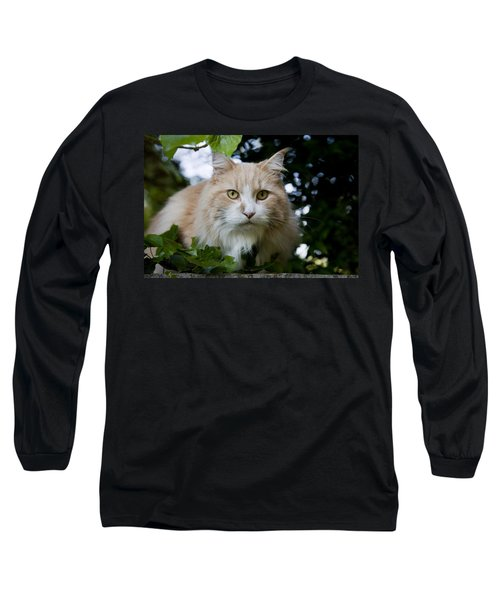 Cream And White Cat Long Sleeve T-Shirt