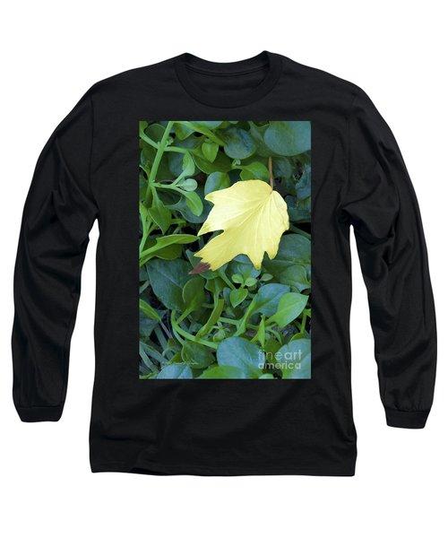 Fallen Yellow Leaf Long Sleeve T-Shirt