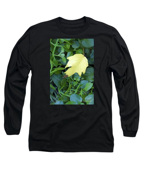 Fallen Yellow Leaf Long Sleeve T-Shirt