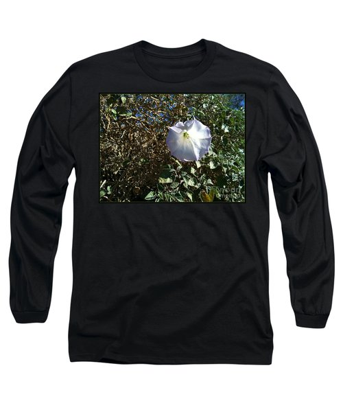 Long Sleeve T-Shirt featuring the photograph  Sacred Datura by Angela J Wright