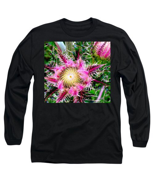 Texas Thistles Long Sleeve T-Shirt by Antonia Citrino