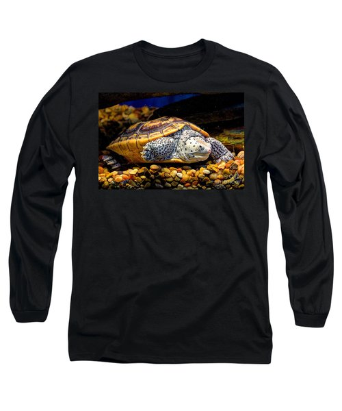 Sea Turtle Long Sleeve T-Shirt by Savannah Gibbs