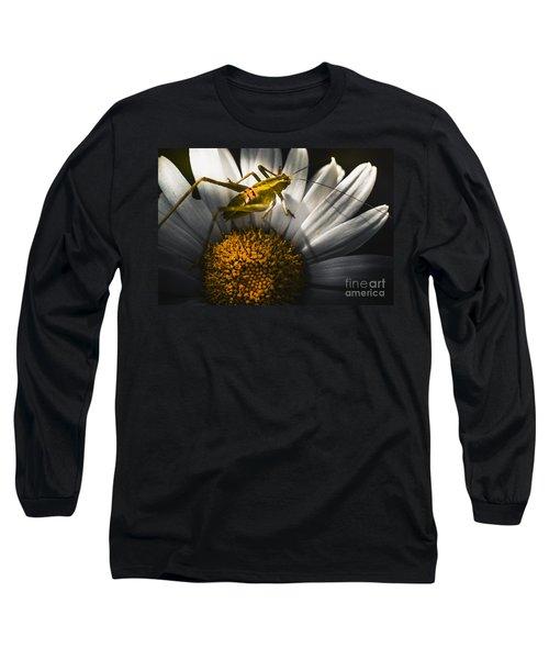 Australian Grasshopper On Flowers. Spring Concept Long Sleeve T-Shirt by Jorgo Photography - Wall Art Gallery