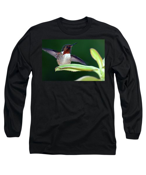 Close-up Of A Scintillant Hummingbird Long Sleeve T-Shirt
