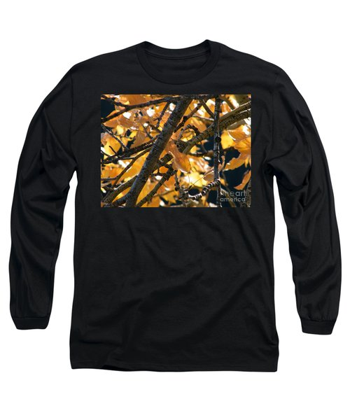 Long Sleeve T-Shirt featuring the photograph Fall Leaves by Ann E Robson