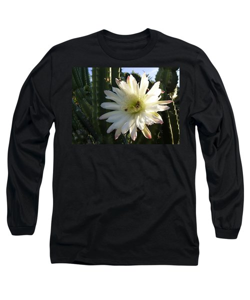 Flowering Cactus 1 Long Sleeve T-Shirt by Mariusz Kula