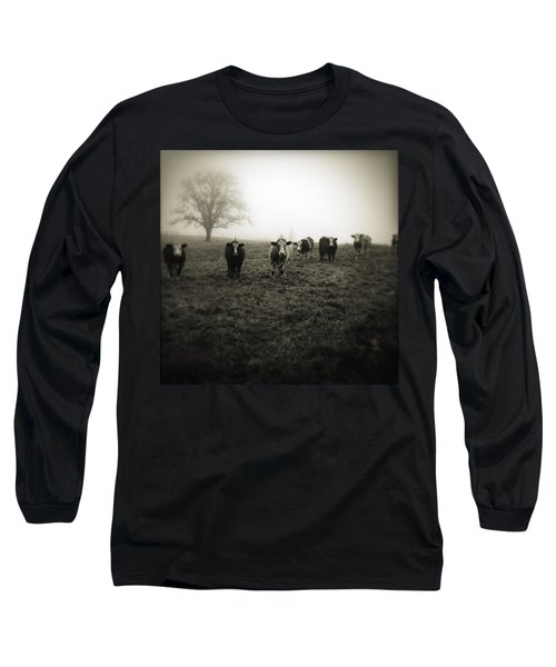 Livestock Long Sleeve T-Shirt by Les Cunliffe
