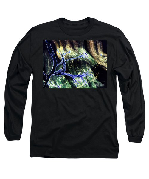 Rabbit Neuron Nerve Ending Lm Long Sleeve T-Shirt