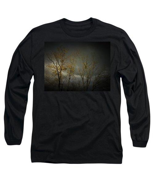 Shine 2 Long Sleeve T-Shirt by Cynthia Lassiter