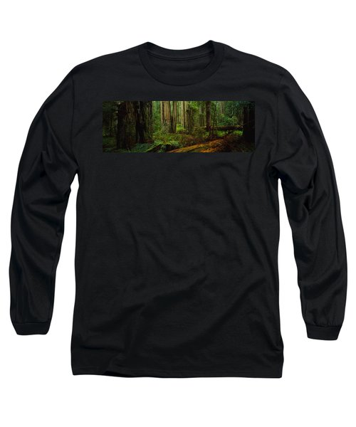 Trees In A Forest, Hoh Rainforest Long Sleeve T-Shirt
