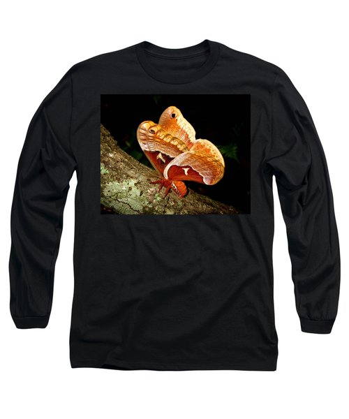 Tuliptree Silkmoth Long Sleeve T-Shirt
