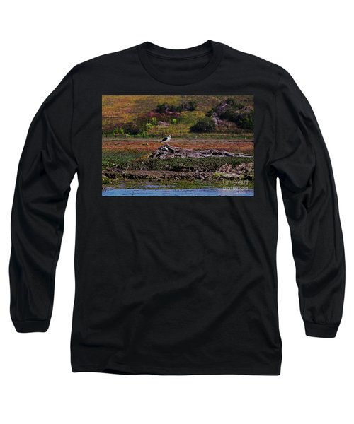 Western Gulls Nesting In A Log Long Sleeve T-Shirt