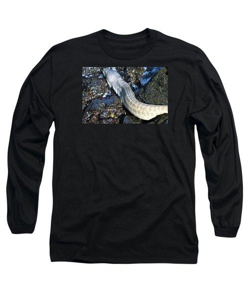 White Moray Eel Long Sleeve T-Shirt by Lehua Pekelo-Stearns