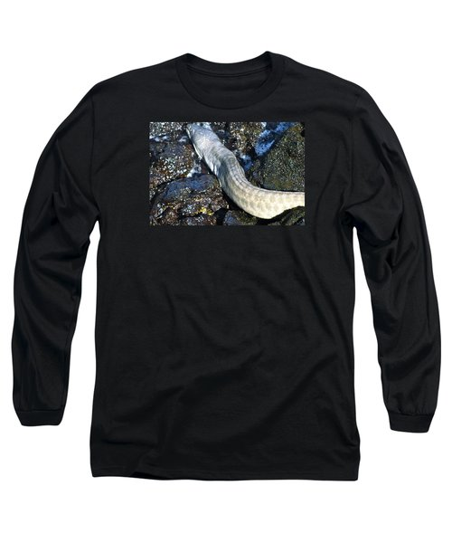 White Moray Eel Long Sleeve T-Shirt