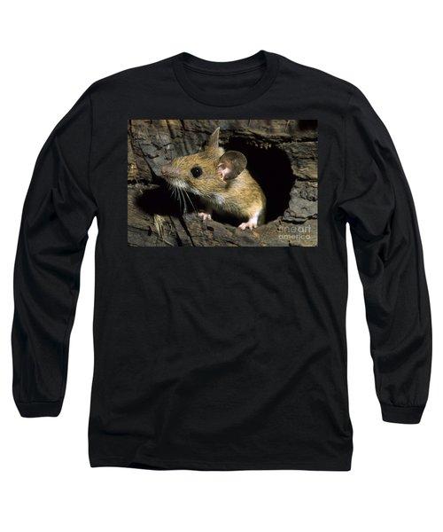 111216p259 Long Sleeve T-Shirt