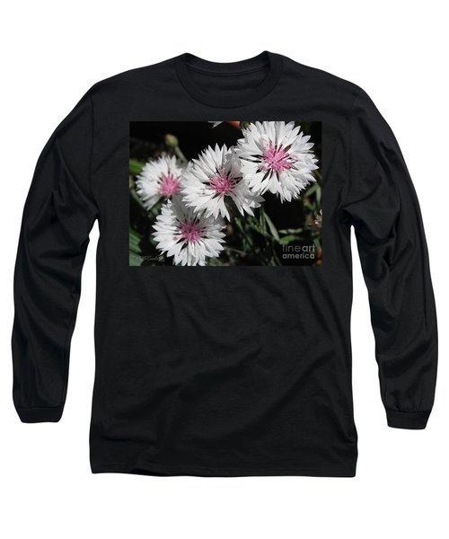 Bachelor Button From The Frosted Queen Mix Long Sleeve T-Shirt