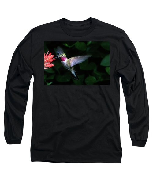 1980s Broad-tailed Hummingbird Long Sleeve T-Shirt