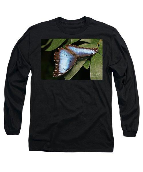 Blue Morpho Butterfly Long Sleeve T-Shirt