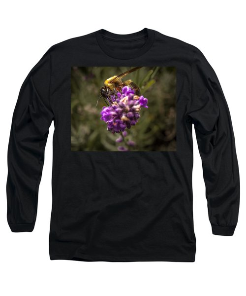 Carpenter Bee On A Lavender Spike Long Sleeve T-Shirt
