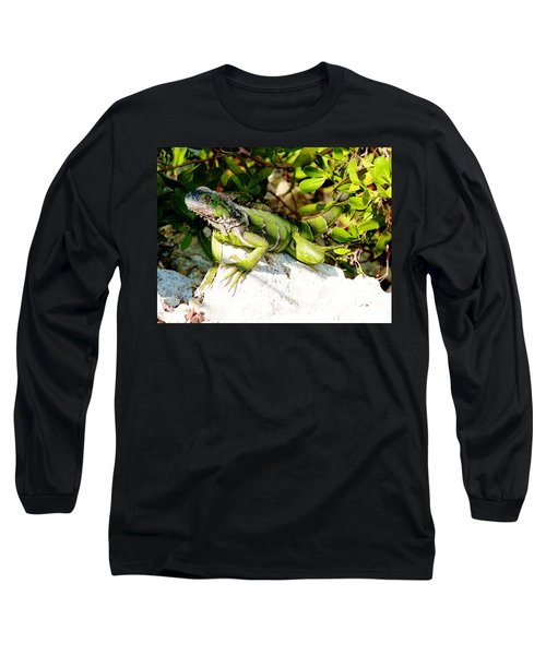 Long Sleeve T-Shirt featuring the photograph Green Iguana by Amar Sheow