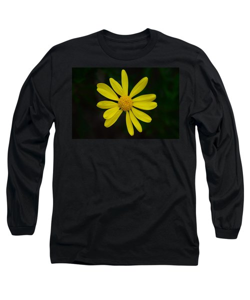 Long Sleeve T-Shirt featuring the photograph Isolated Daisy by Debra Martz