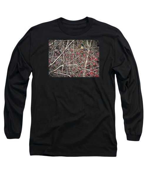 Long Sleeve T-Shirt featuring the photograph Robin by Joy Nichols