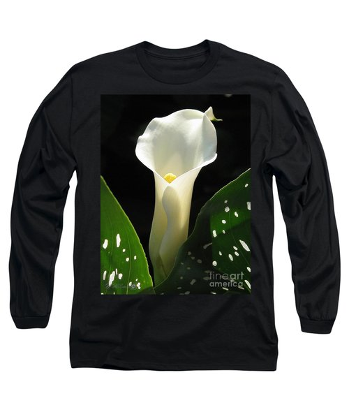 Zantedeschia Named Little Jimmy Long Sleeve T-Shirt by J McCombie