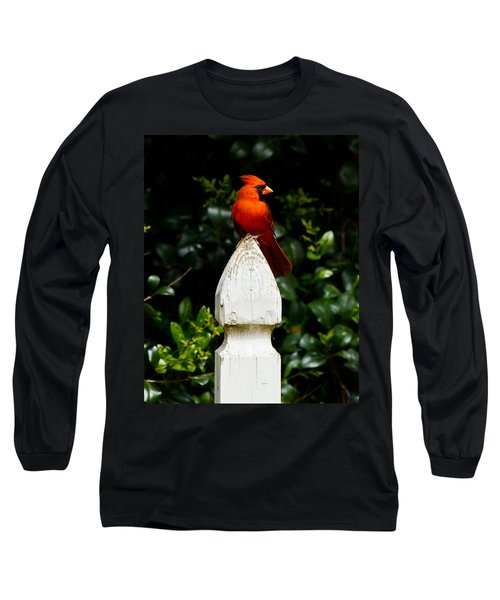 Male Cardinal Long Sleeve T-Shirt