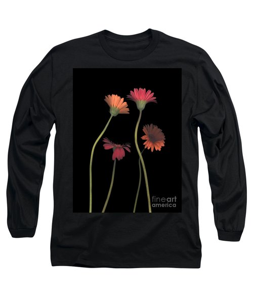 4daisies On Stems Long Sleeve T-Shirt